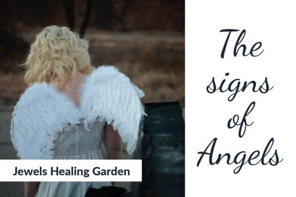 Signs of Angels