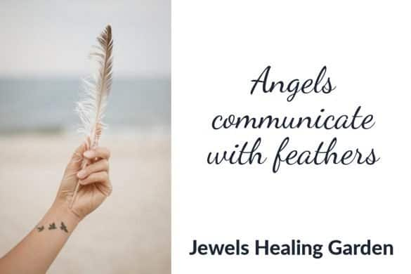 Angels communicate with feathers